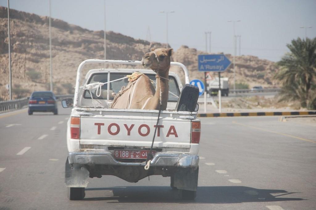 Circuit à Oman