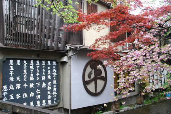 Canal et arbres de Kyoto (5)