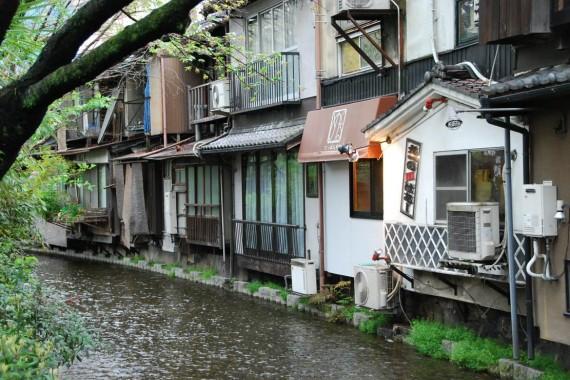 Canal et arbres de Kyoto (7)