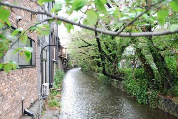 Canal et arbres de Kyoto (8)