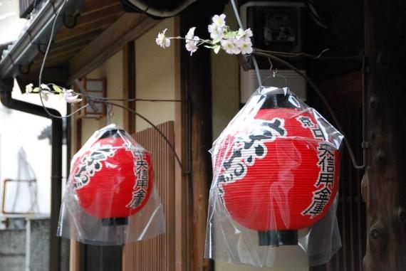 Lanternes à Kyoto (1)