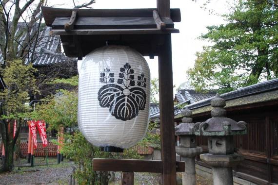 Lanternes à Kyoto (12)