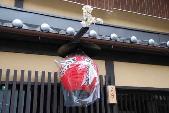Lanternes à Kyoto (13)
