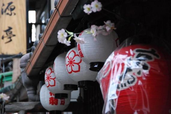 Lanternes à Kyoto (3)