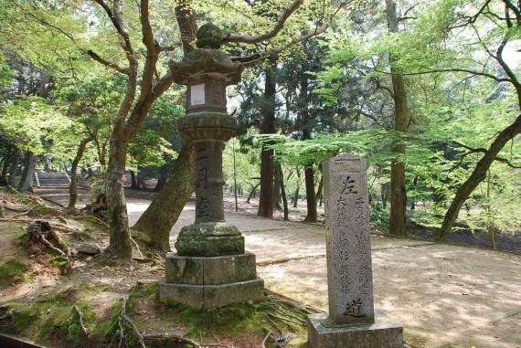 Le parc de Nara (7)