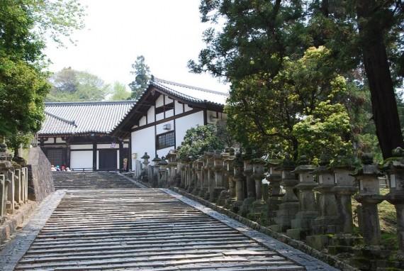 Le parc de Nara (8)