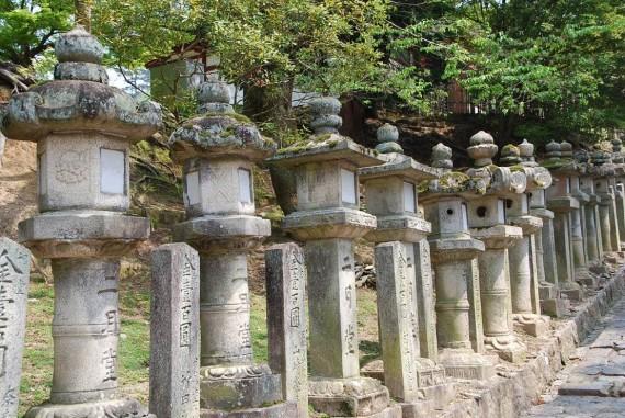 Le parc de Nara (9)