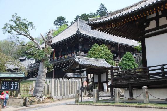 Les temples de Nara (10)