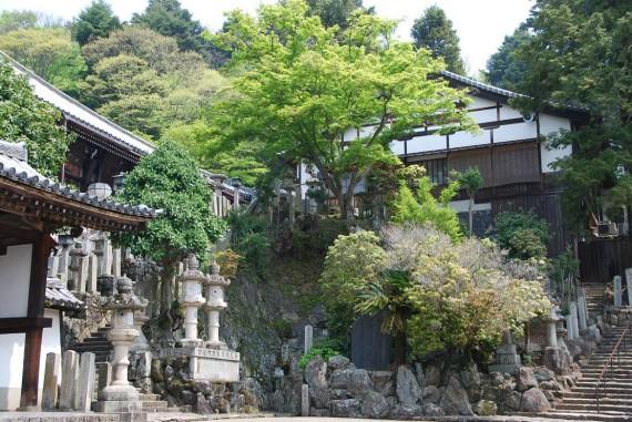 Les temples de Nara (11)