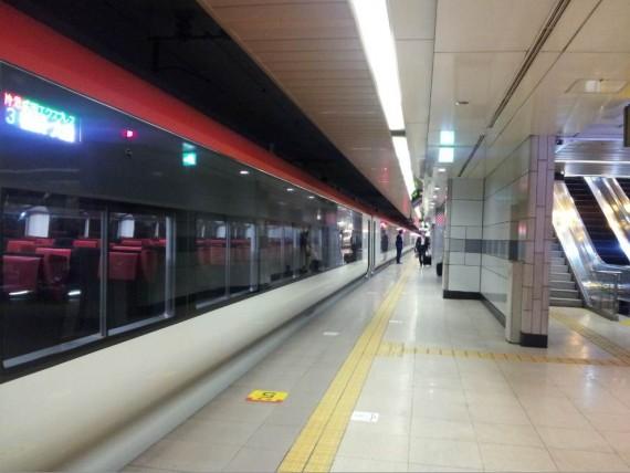 Tokyo - Narita Express (3)