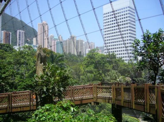 Hong-Kong 03 (10)