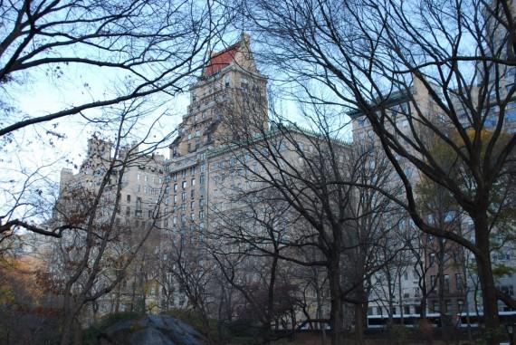 Central Park New York (5)