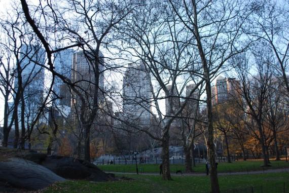 Central Park New York (9)