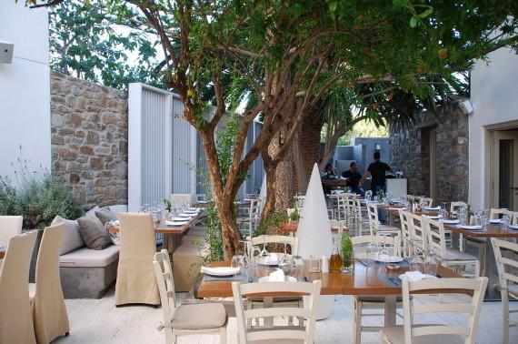 Bonnes adresses de restaurant à Mykonos (21)