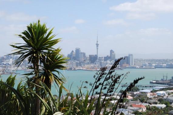 Auckland12