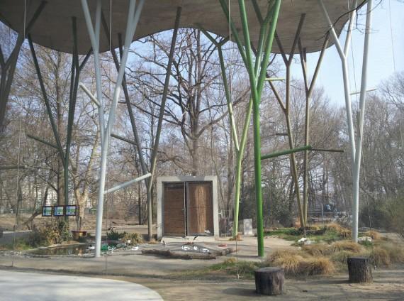 Bois de la Bâtie Genève (9)