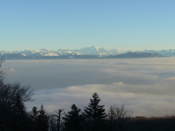 Vue sur les Alpes depuis Saint-Cergues 03