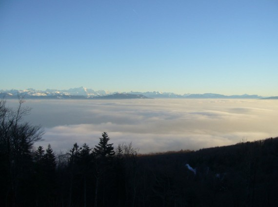 Vue sur les Alpes depuis Saint-Cergues 04
