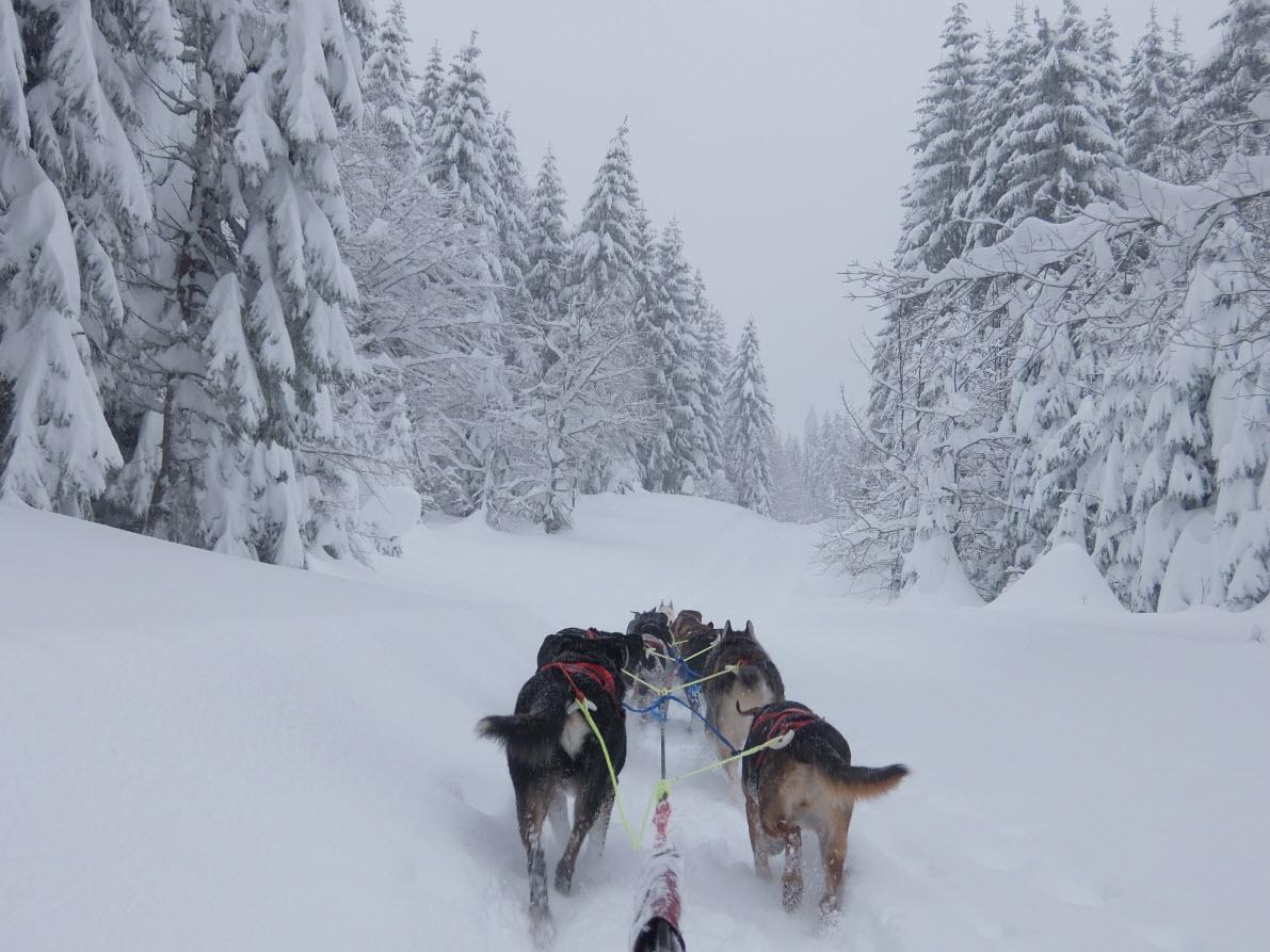 Skier depart Geneve Les Rousses