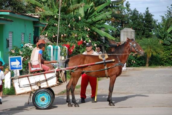 Moyens transport Cuba (10)