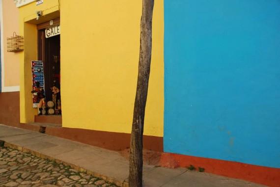 Oiseaux maisons Cuba (2)