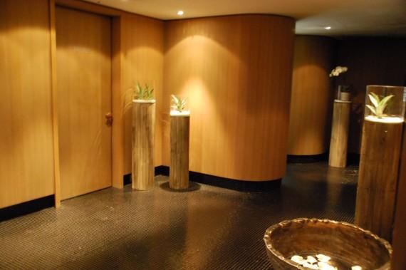Spa Sisley de l'hôtel Le Richemond (17)