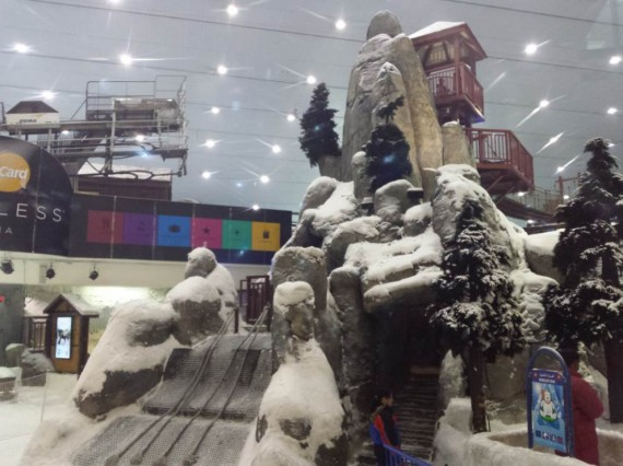 Mall of the Emirates (13)