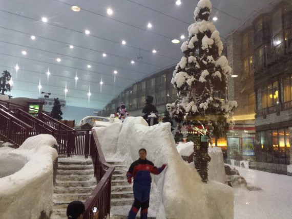 Mall of the Emirates (14)