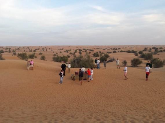 Al Maha camel ride (4)