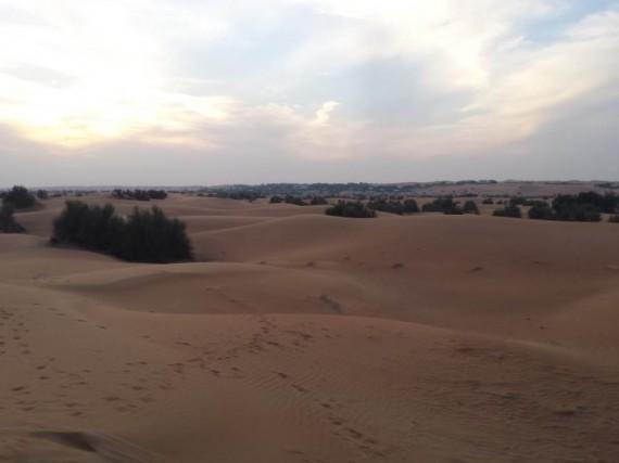 Al Maha camel ride (5)