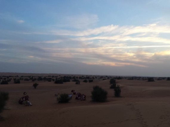 Al Maha camel ride (7)