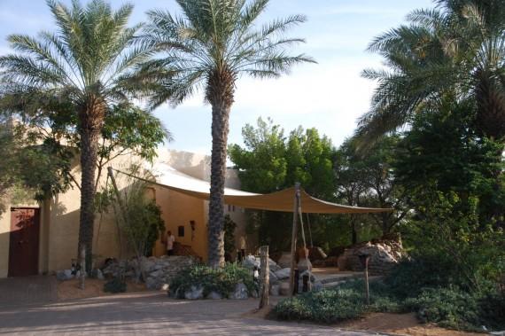 Al Maha resort Dubai 03
