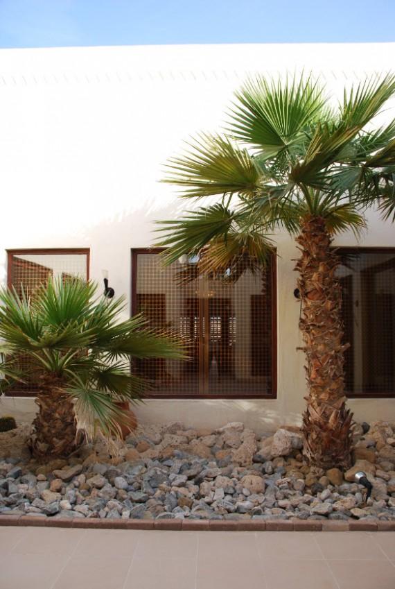 Al Maha resort Dubai 06