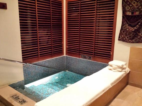 Al Maha resort Dubai 56