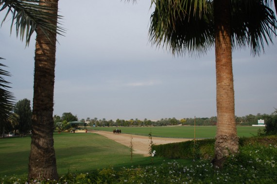 Polo Club Dubai 07