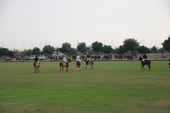 Polo Club Dubai 24