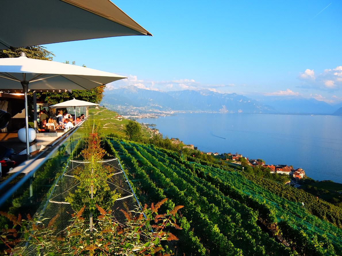 Le Deck  U00e0 Chexbres  Une Terrasse Au Milieu Des Vignes