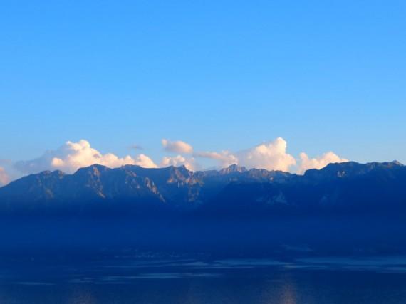 Suisse Majestic 03