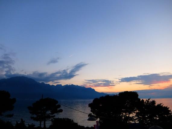 Suisse Majestic 04