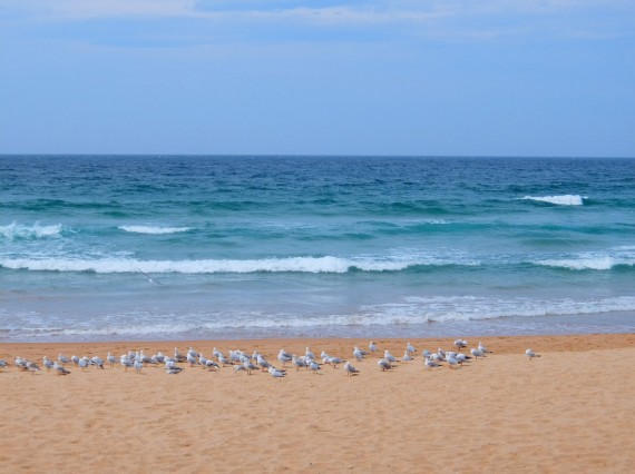 Manly 07