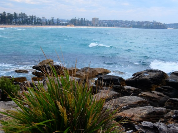 Manly 11