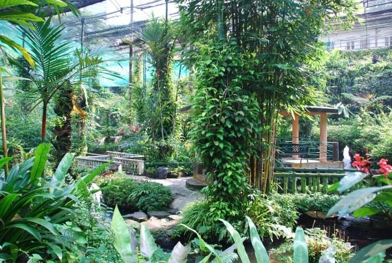 Kuala Lumpur Butterfly Park (18)