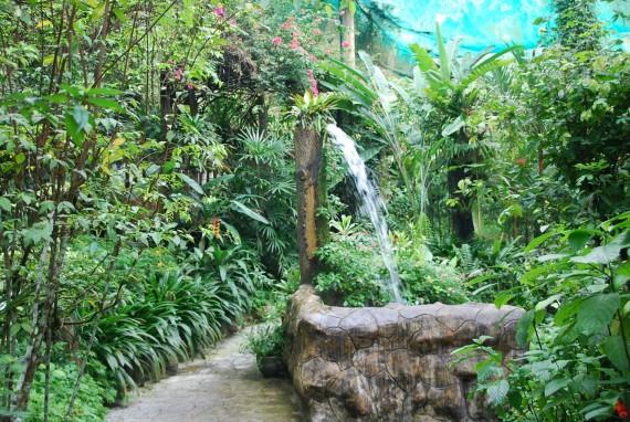 Kuala Lumpur Butterfly Park (21)