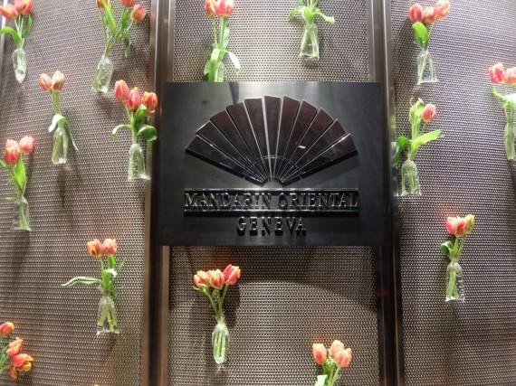 Fete de la tulipe (1)