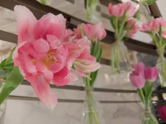 Fete de la tulipe (5)
