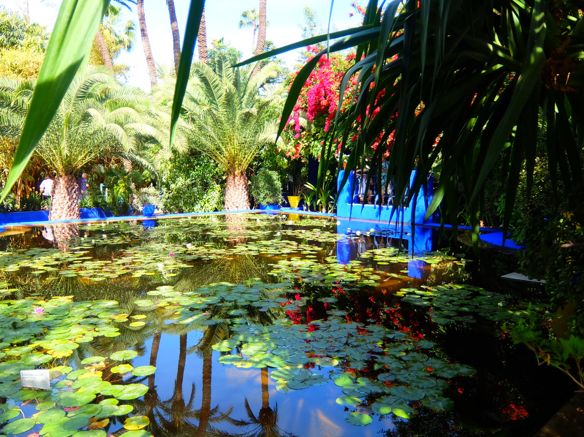 jardin majorelle marrakech inspiration for travellers. Black Bedroom Furniture Sets. Home Design Ideas