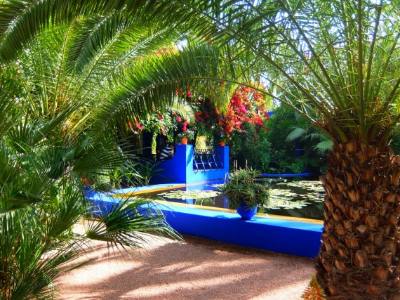 Jardin Majorelle (13)
