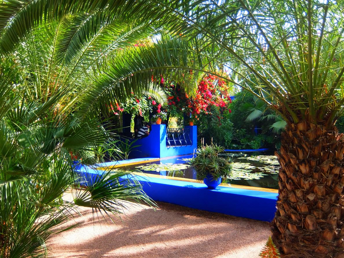 Jardin majorelle marrakech inspiration for travellers - Jardin majorelle prix d entree ...