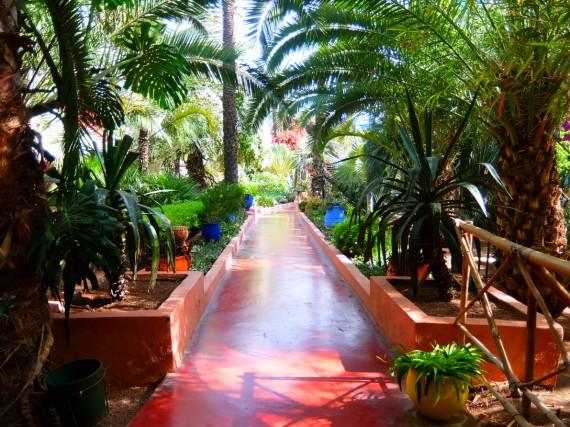 Jardin Majorelle (15)