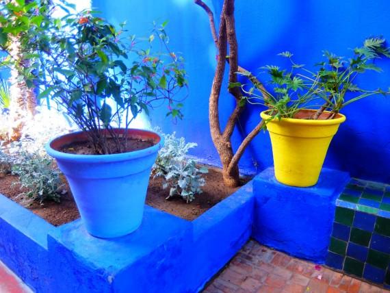 Jardin Majorelle (5)